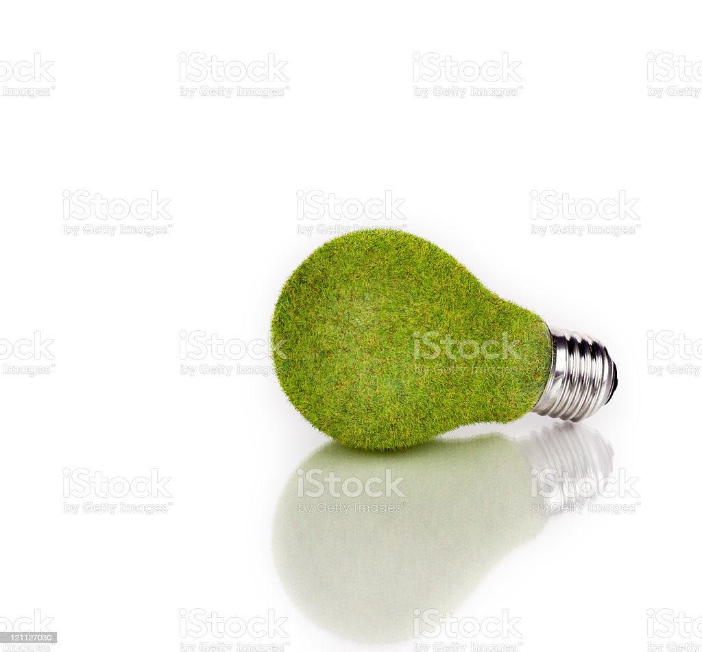 Studio Objects; Grass light bulb on white royalty-free stock photo