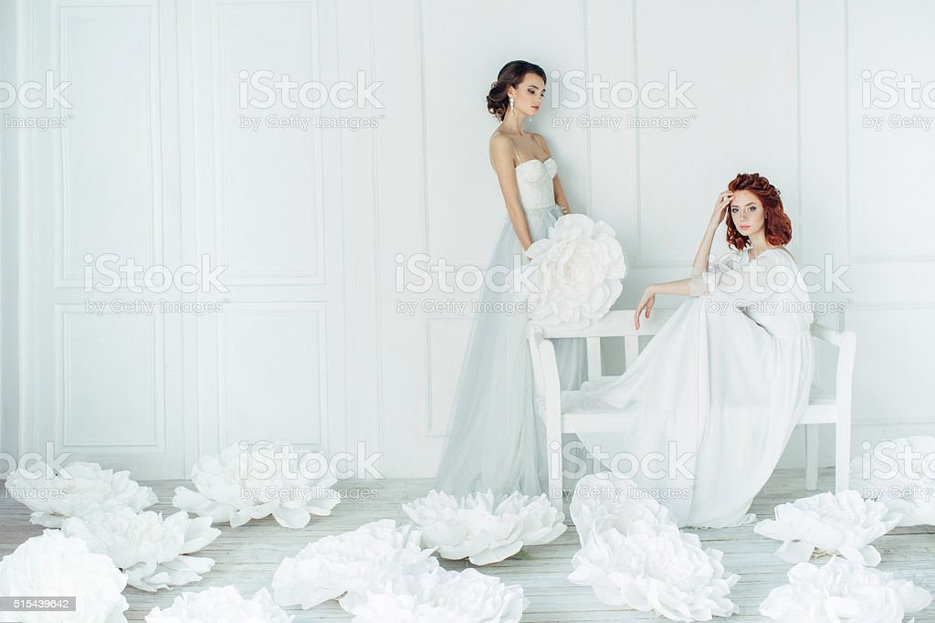 Studio shot of two young beautiful brides stock photo