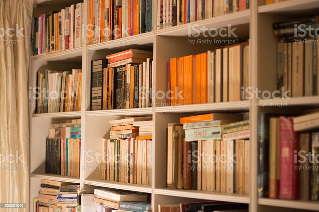 Study bookshelf. stock photo