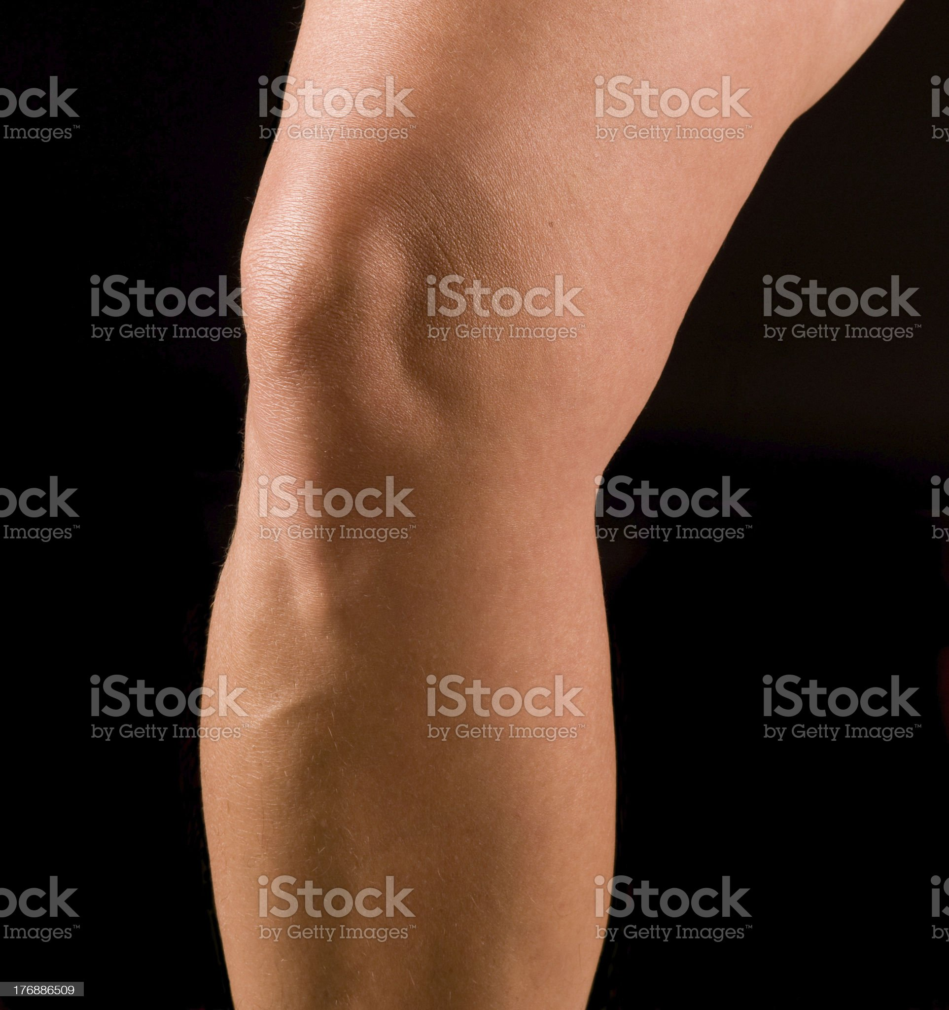 study of woman's knee royalty-free stock photo