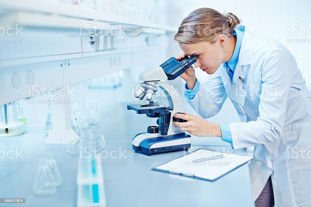 Studying new virus stock photo