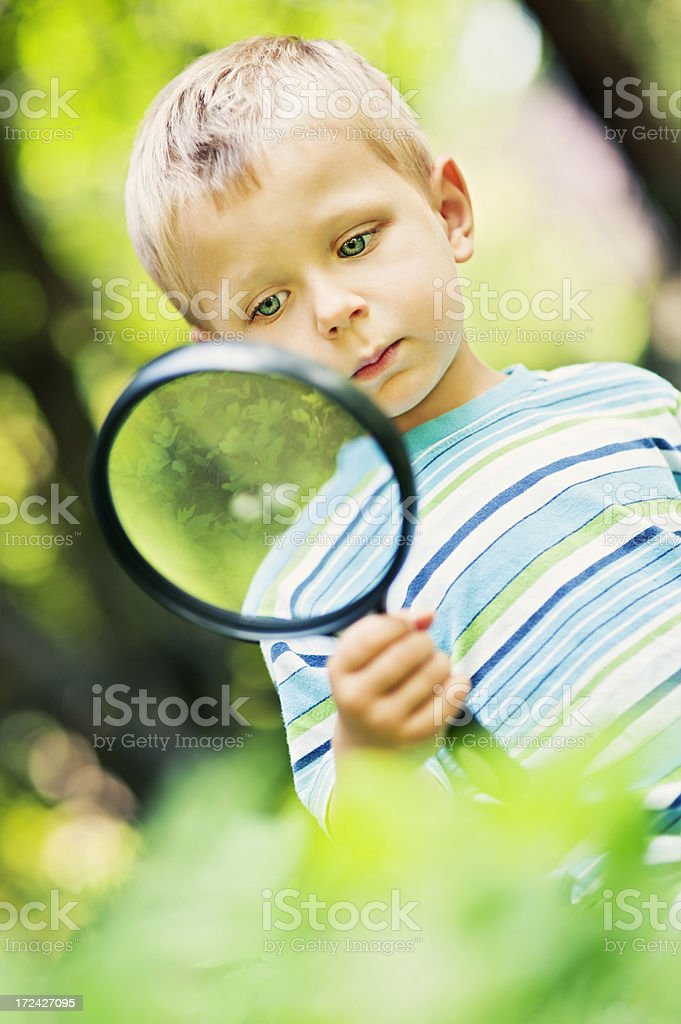 Studying the forest royalty-free stock photo