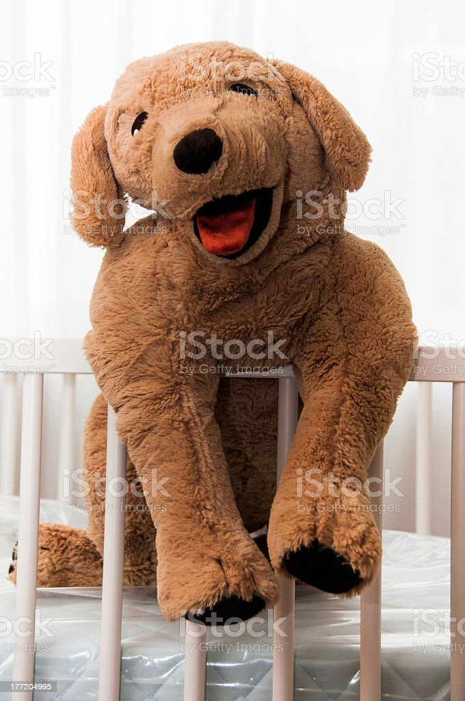 Stuffed dog royalty-free stock photo