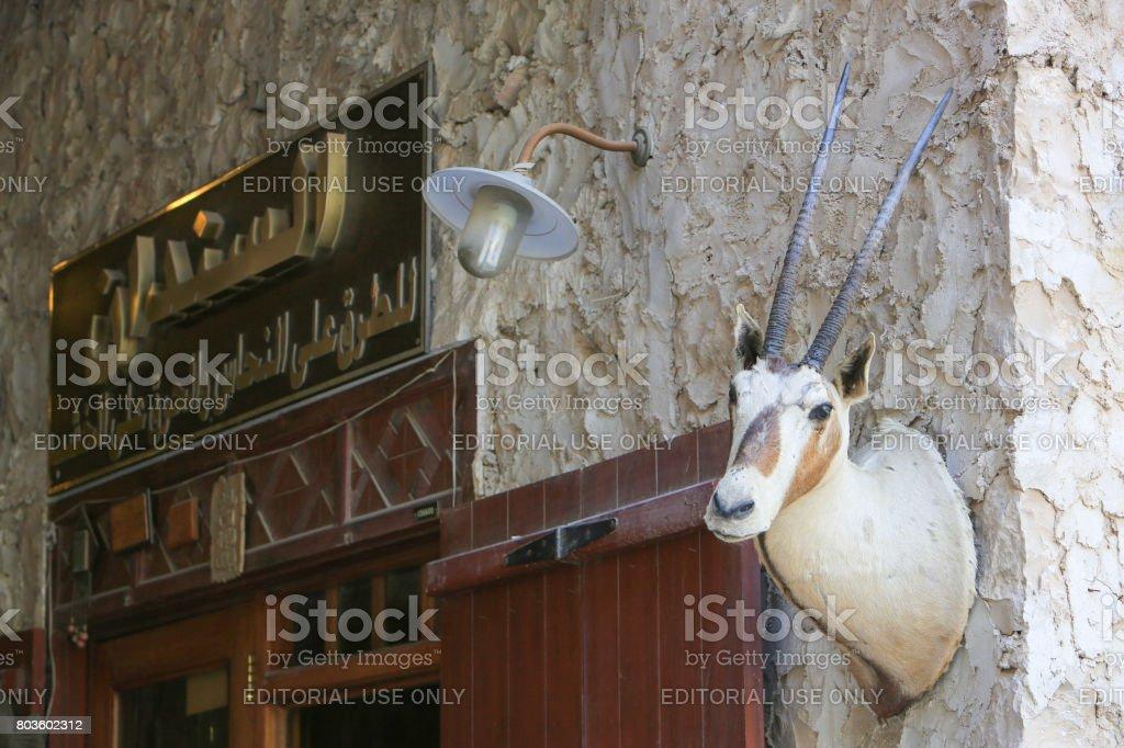 Stuffed head of Arabian oryx in Souk Waqif, Doha, Qatar stock photo