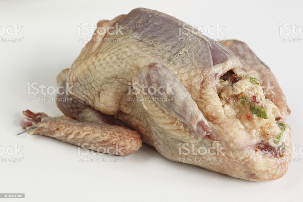 Stuffed pigeon stock photo