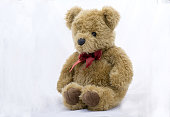 stuffed toy bear  on a white background