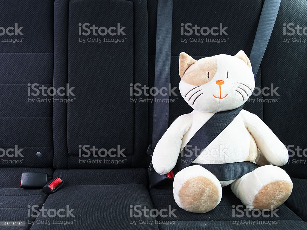 Stuffed toy with seat belt fastened stock photo