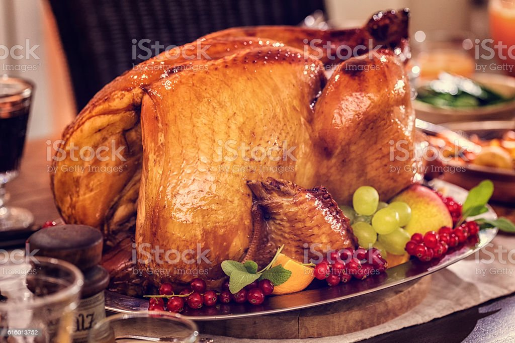 Stuffed Turkey and Pumpkin Pie stock photo