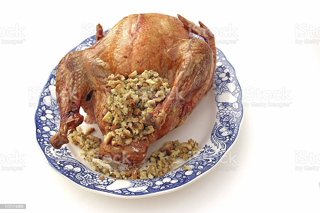 Stuffed Turkey Isolated royalty-free stock photo