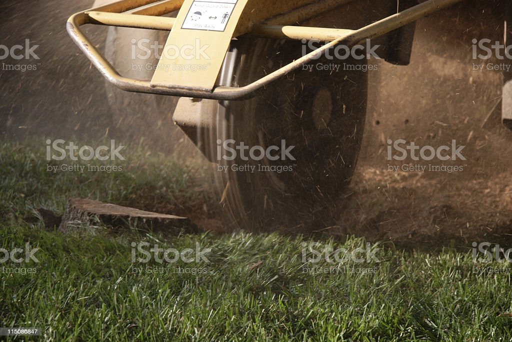 stump grinder (tree removal series) stock photo