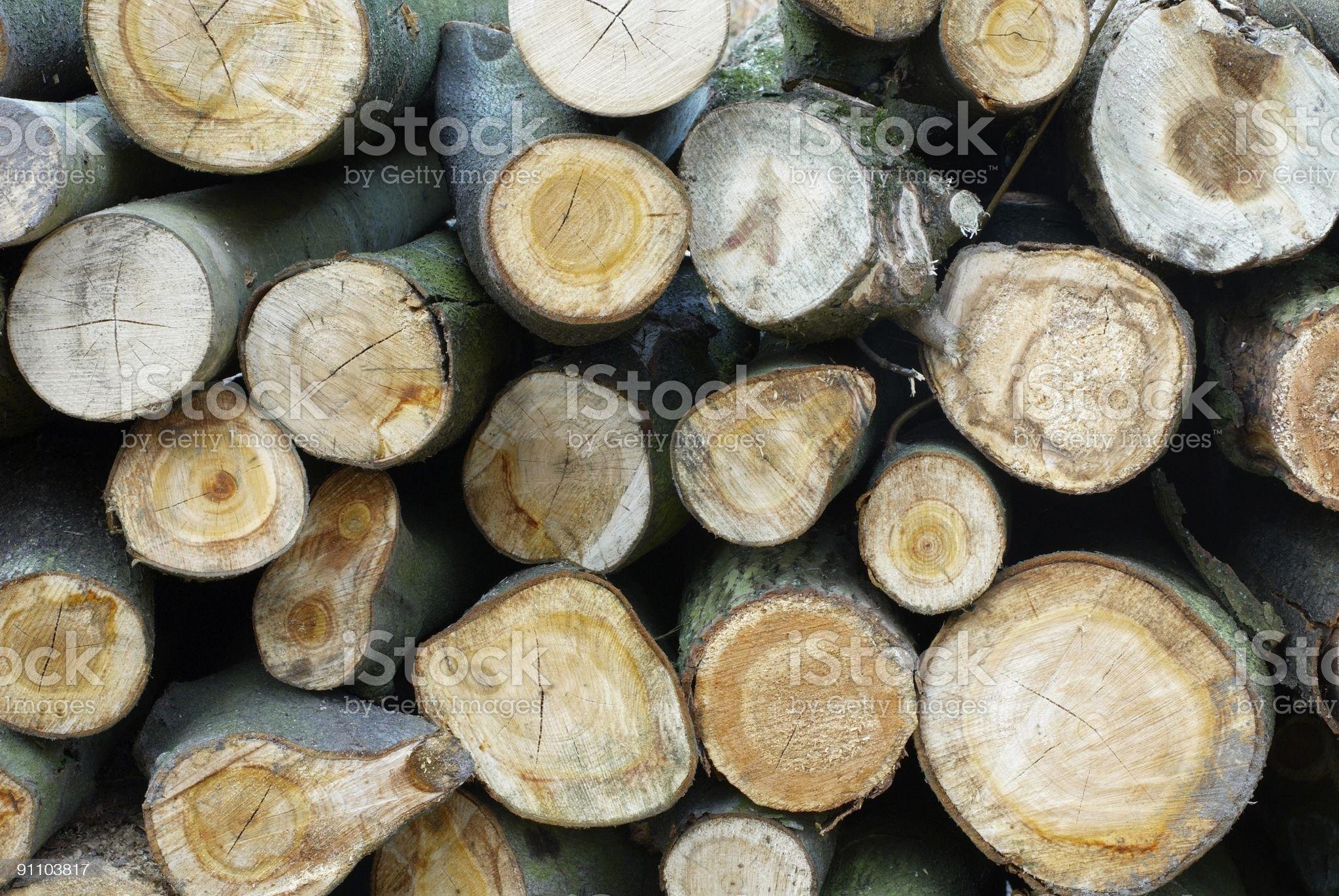 Stumps royalty-free stock photo