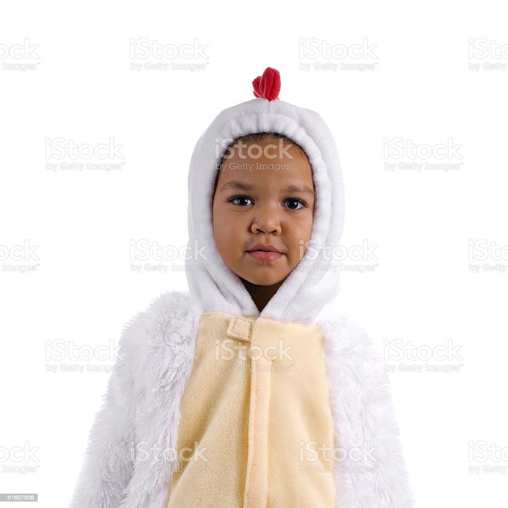 Stunned Chicken stock photo
