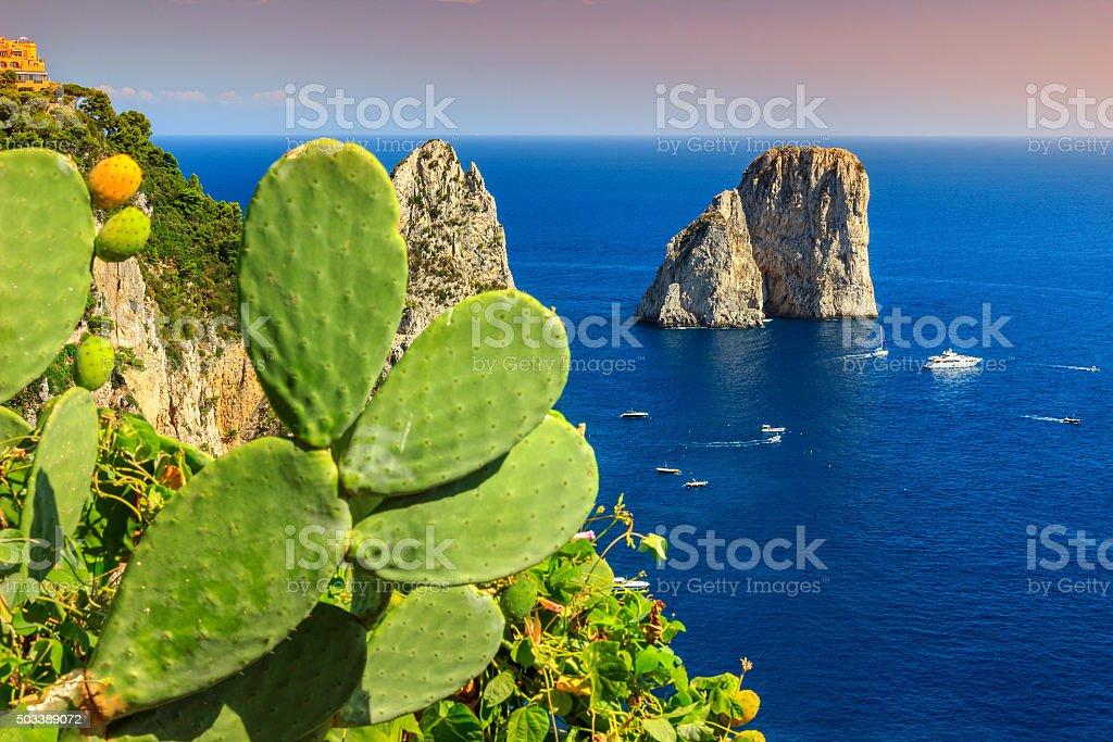 Stunning Capri island with Faraglioni cliffs,Italy,Europe stock photo