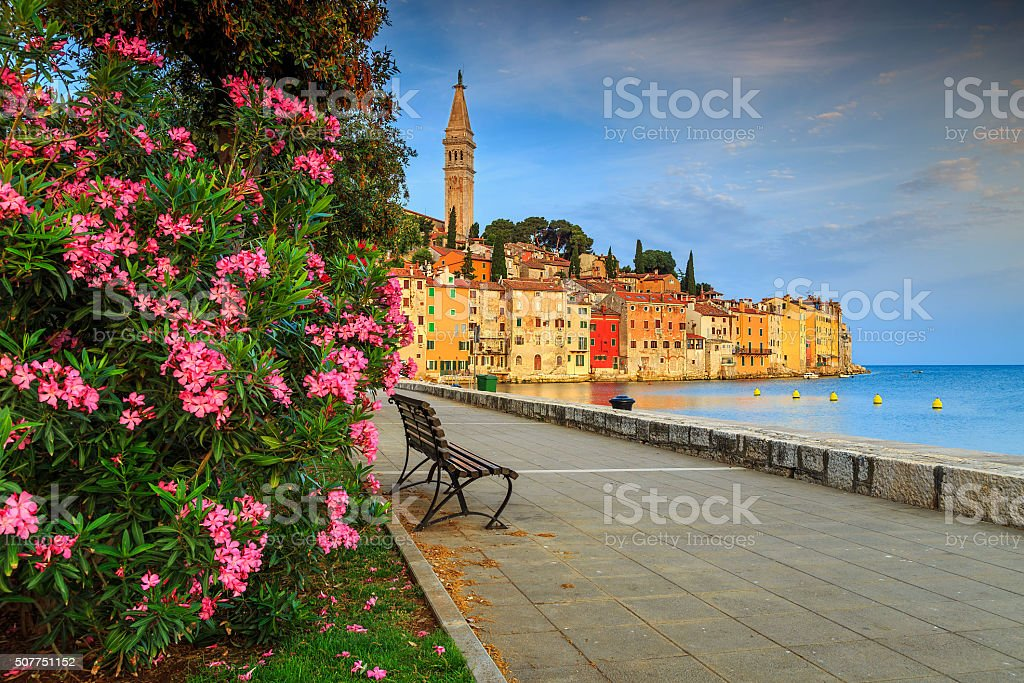 Stunning cityscape with Rovinj old town,Istria region,Croatia,Europe stock photo