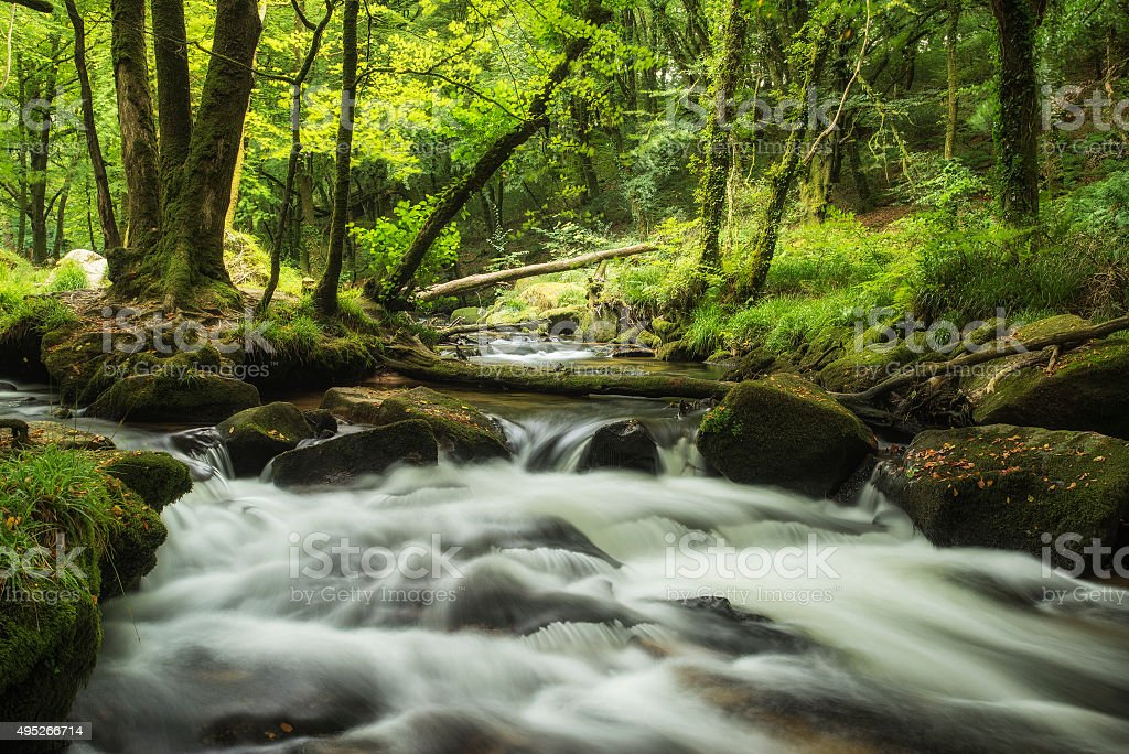 Stunning landscape iamge of river flowing through lush green for stock photo