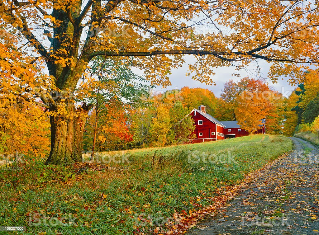 A stunning park in Vermont in autumn stock photo