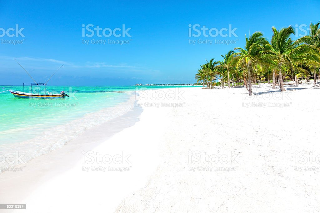 Stunning tropical beach with coconut palm and turquoise waters stock photo