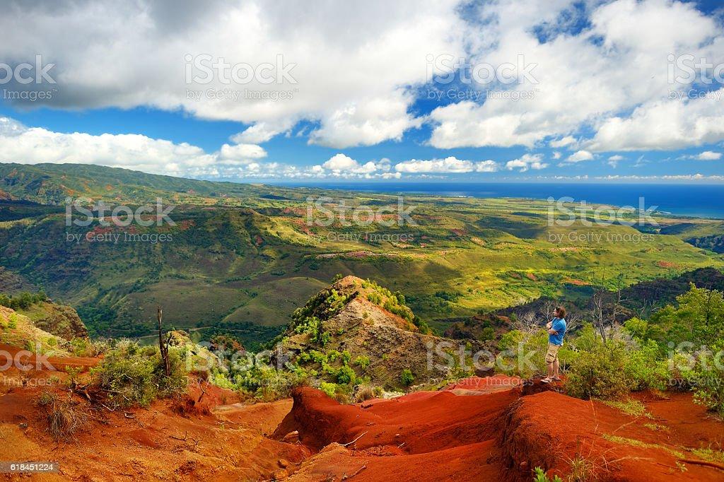 Stunning view into Waimea Canyon with a tourist stock photo