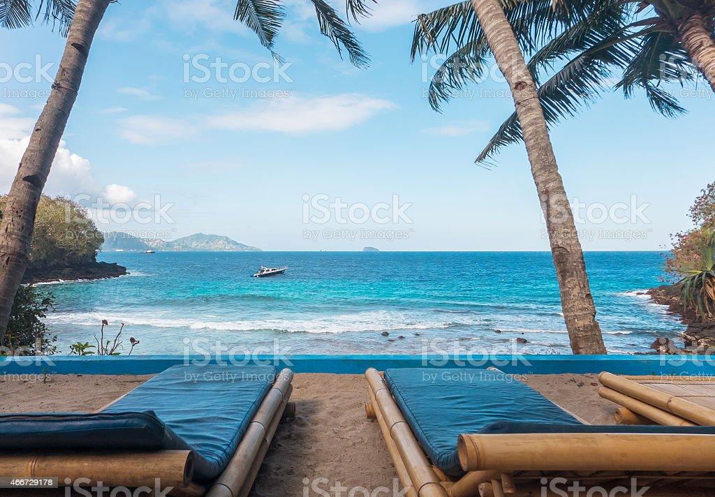 A stunning view secluded beach with palm trees stock photo