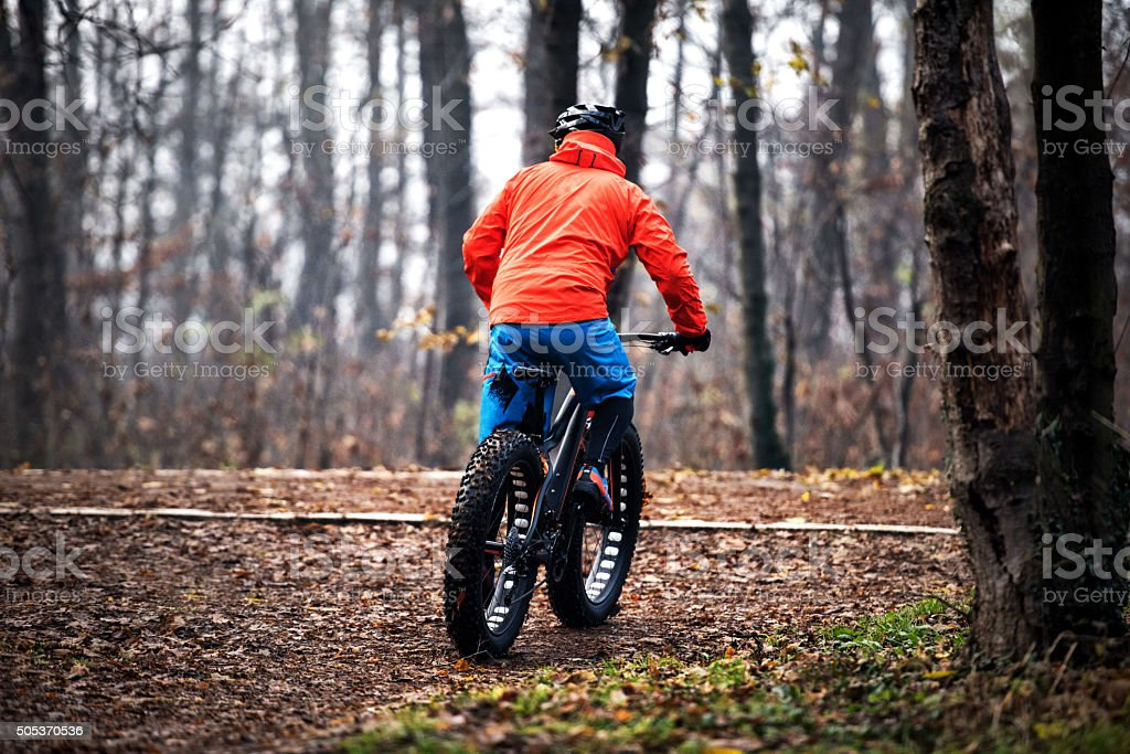 Stunt rider on fat bike in the forest stock photo