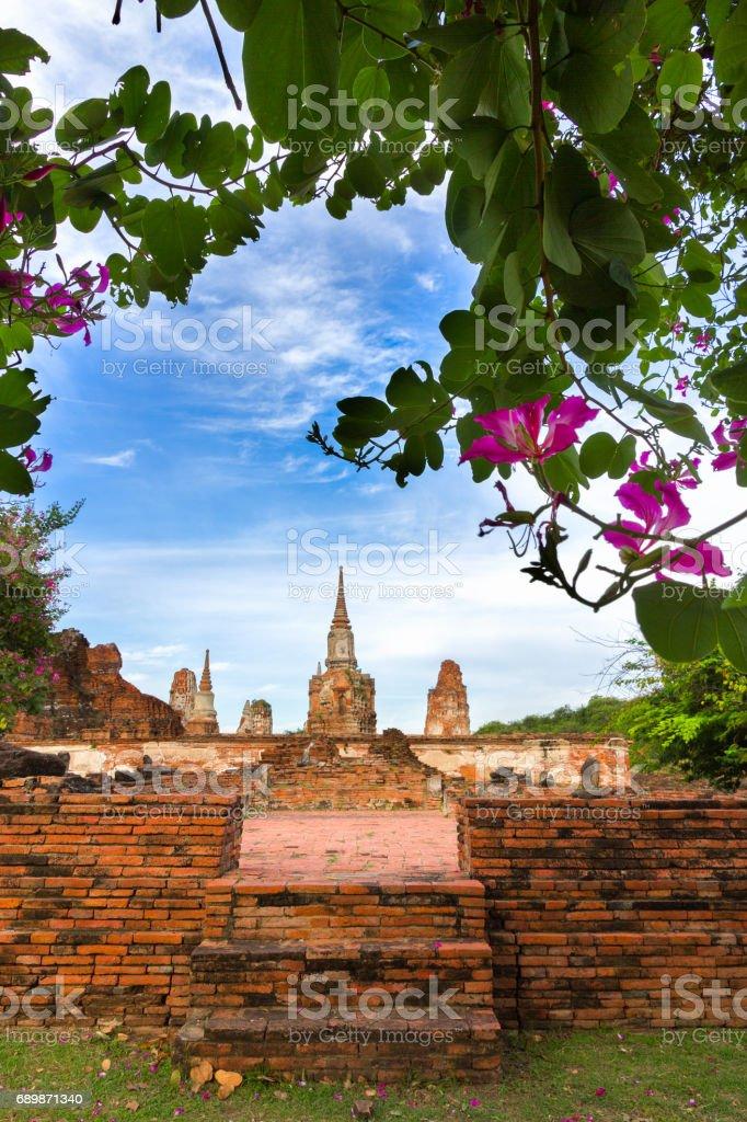 Stupa and flowers of Ayutthaya stock photo