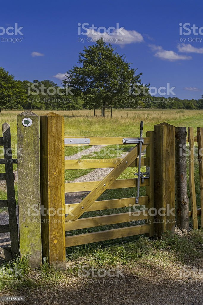 stile royalty-free stock photo