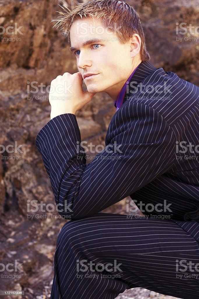 Stylish Suit royalty-free stock photo