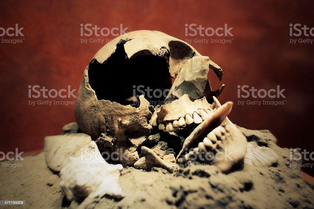 Stylized Broken Skull stock photo