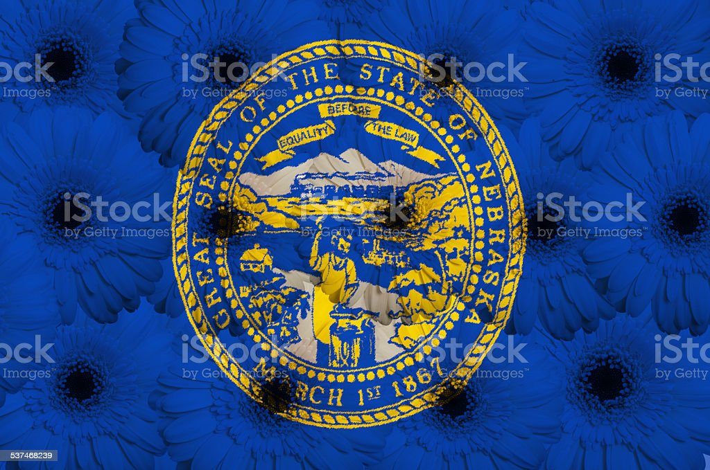 stylized flag of nebraska with gerbera flowers lot stock photo
