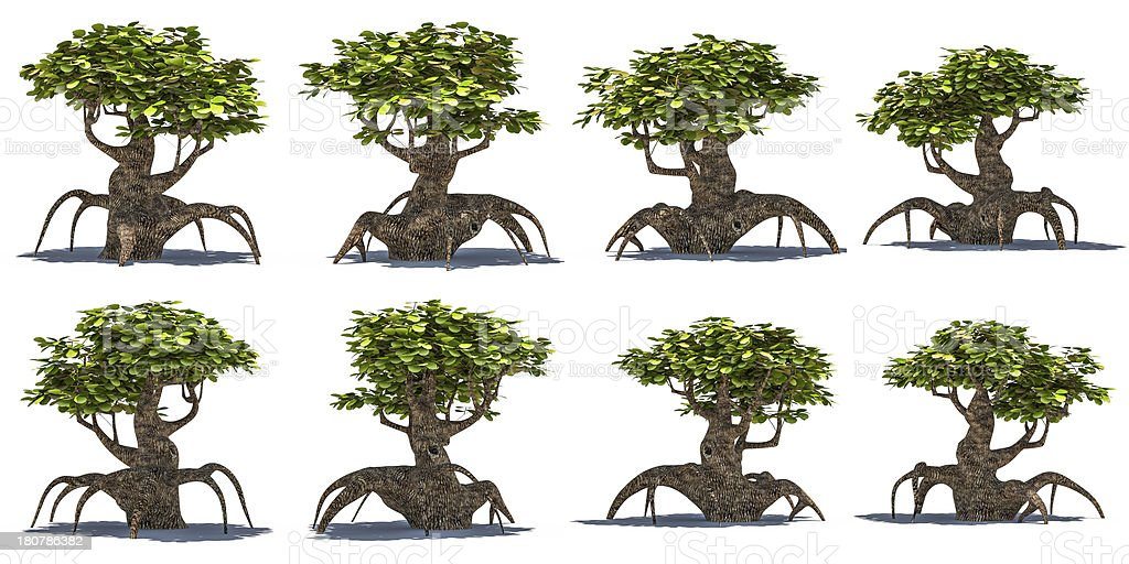 Stylized Tree 3d Isolate stock photo