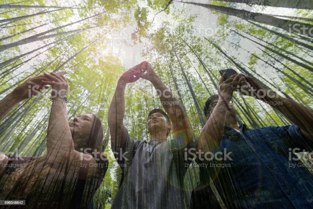 Submerged into the Nature! stock photo
