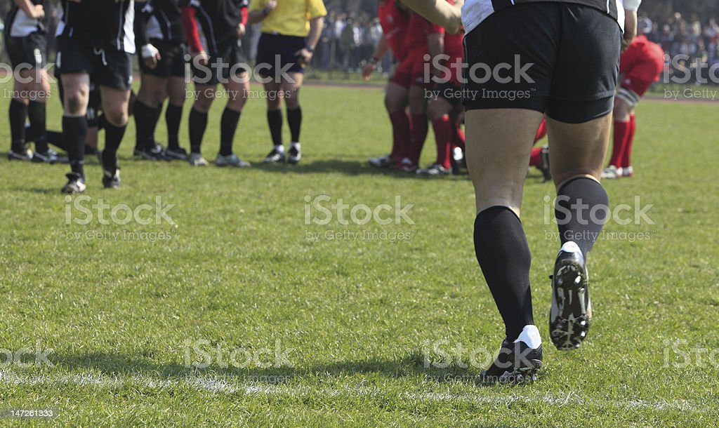 Substitution royalty-free stock photo