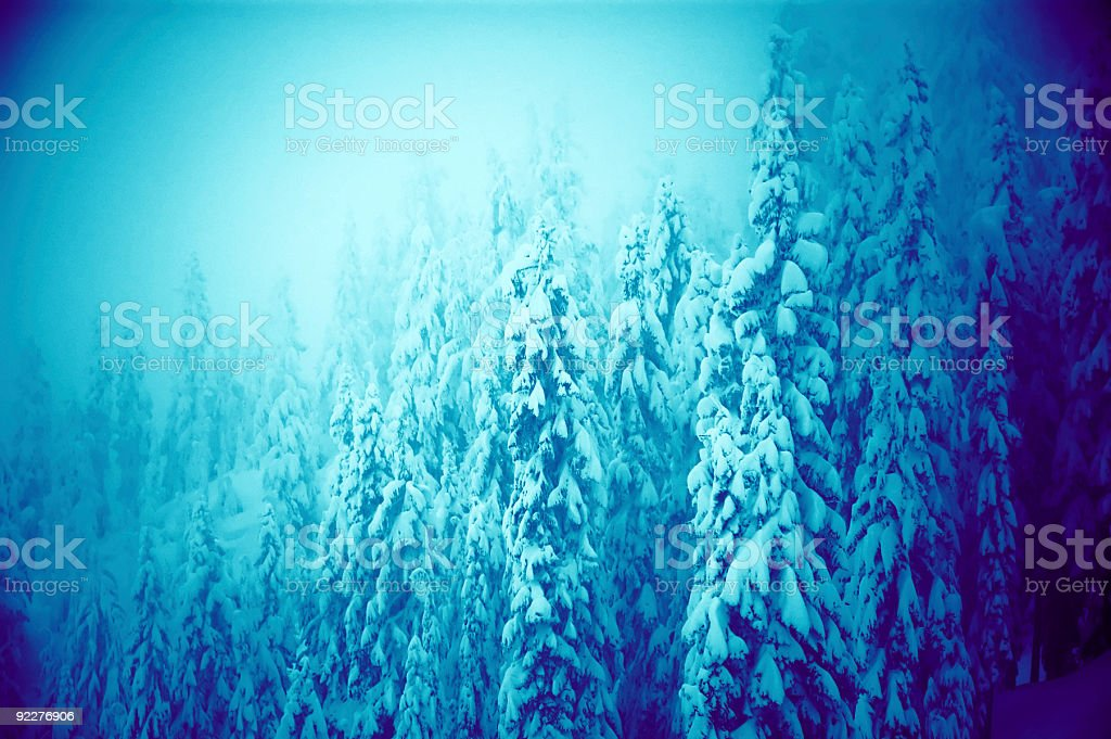 Subtle Snow Covered Tree Background royalty-free stock photo