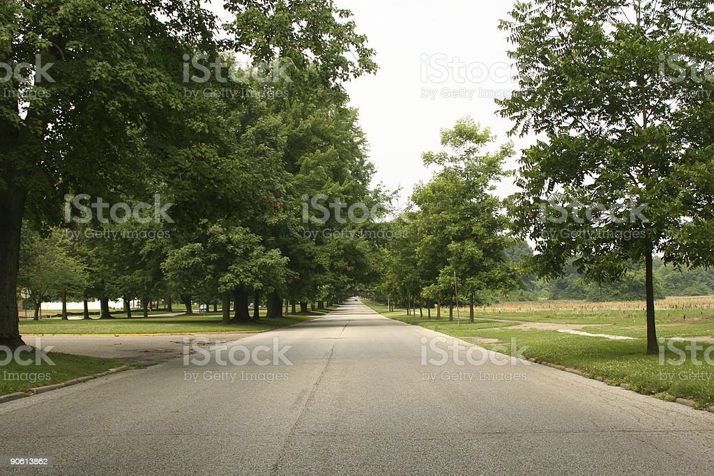 Suburban boulevard royalty-free stock photo
