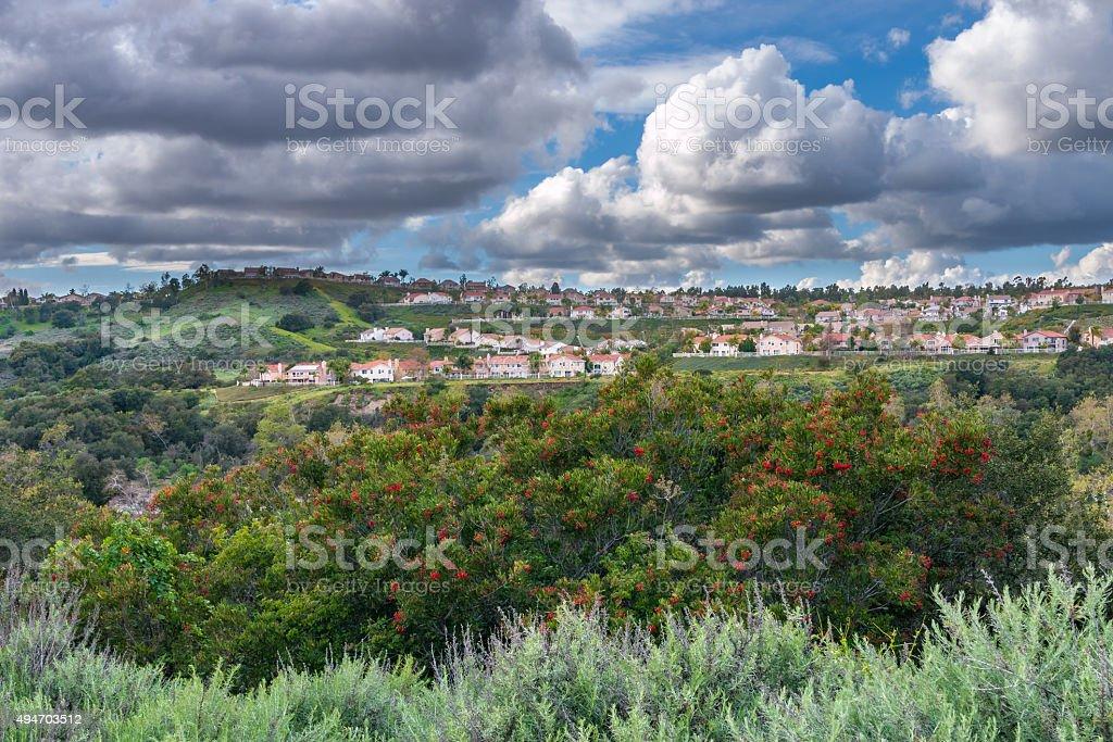 Suburban Housing Tract stock photo