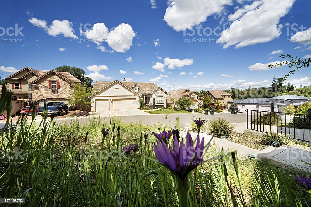 A suburban neighborhood and front yard garden. stock photo