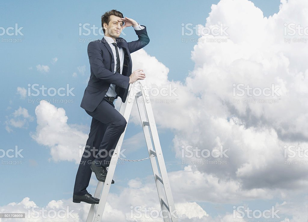 Succesful businessman on the top of business stock photo