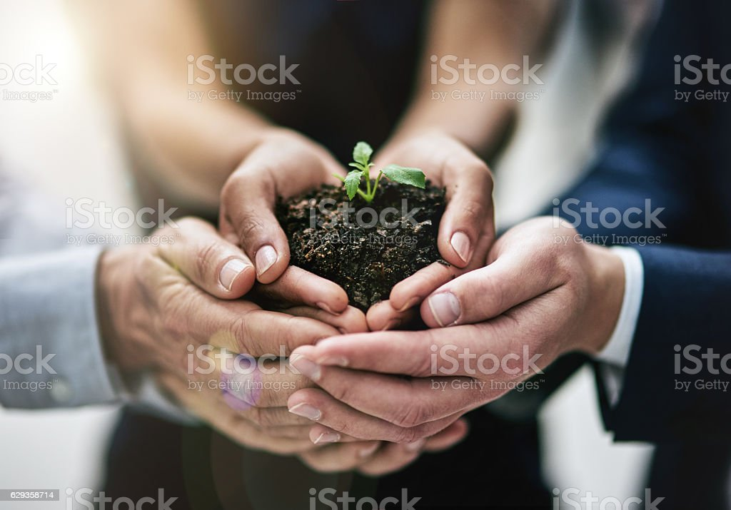 Success begins with one tiny seed stock photo