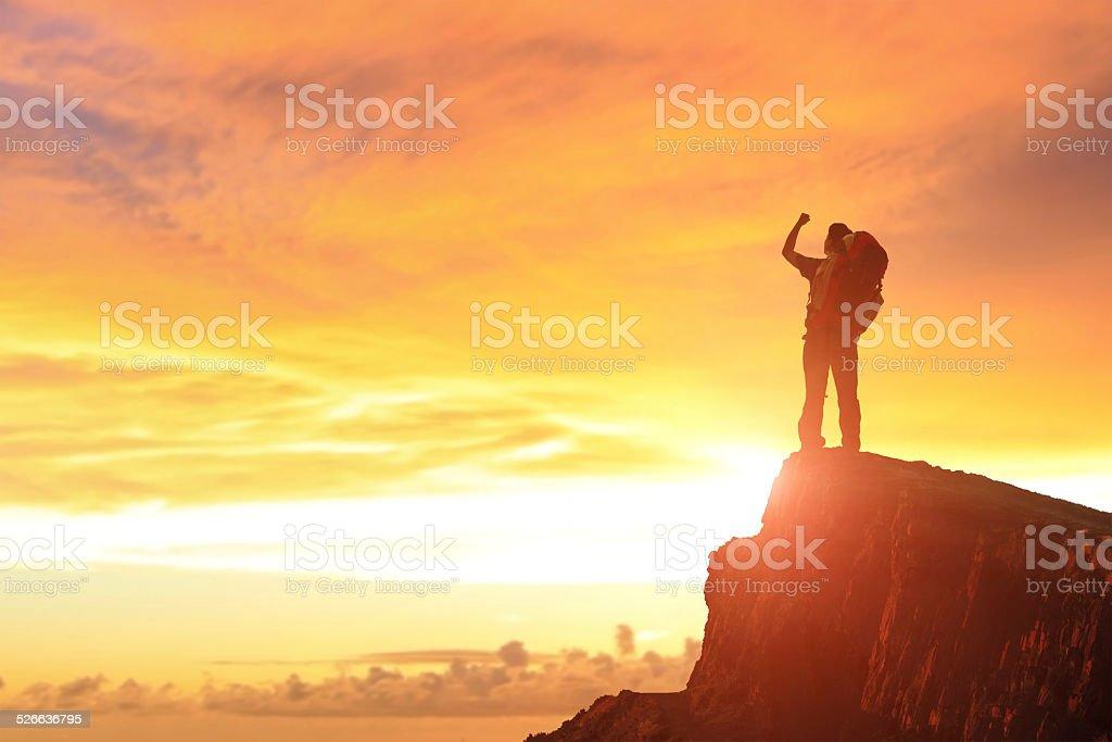 Success man on the mountain stock photo