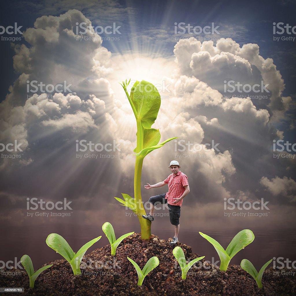 Successful farmer. stock photo