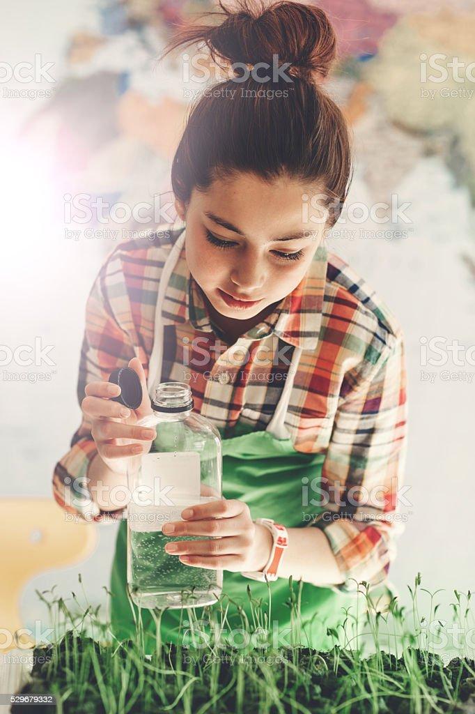 Successful green experimen stock photo