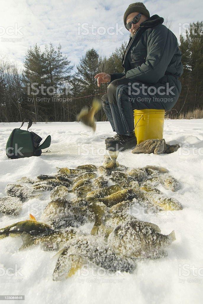 Successful Ice Fisherman royalty-free stock photo