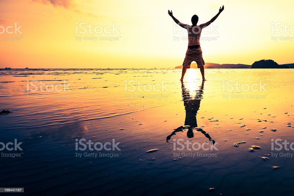 Successful man on the beach royalty-free stock photo