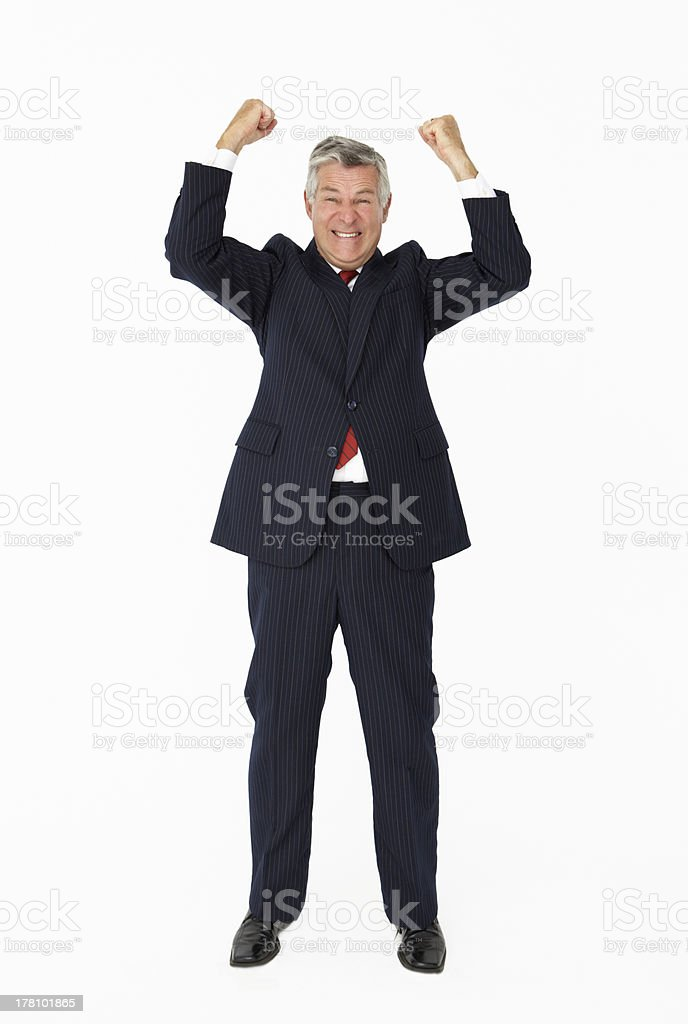 Successful senior businessman royalty-free stock photo