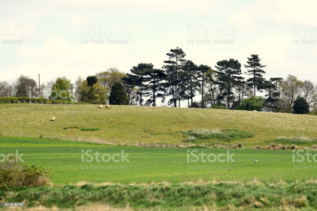 suffolk east anglia  countryside farming landscape background stock photo
