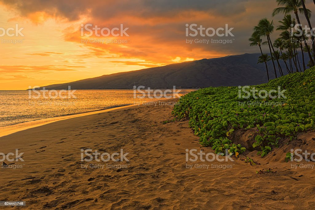 Sugar Beach Kihei Maui Hawaii USA stock photo