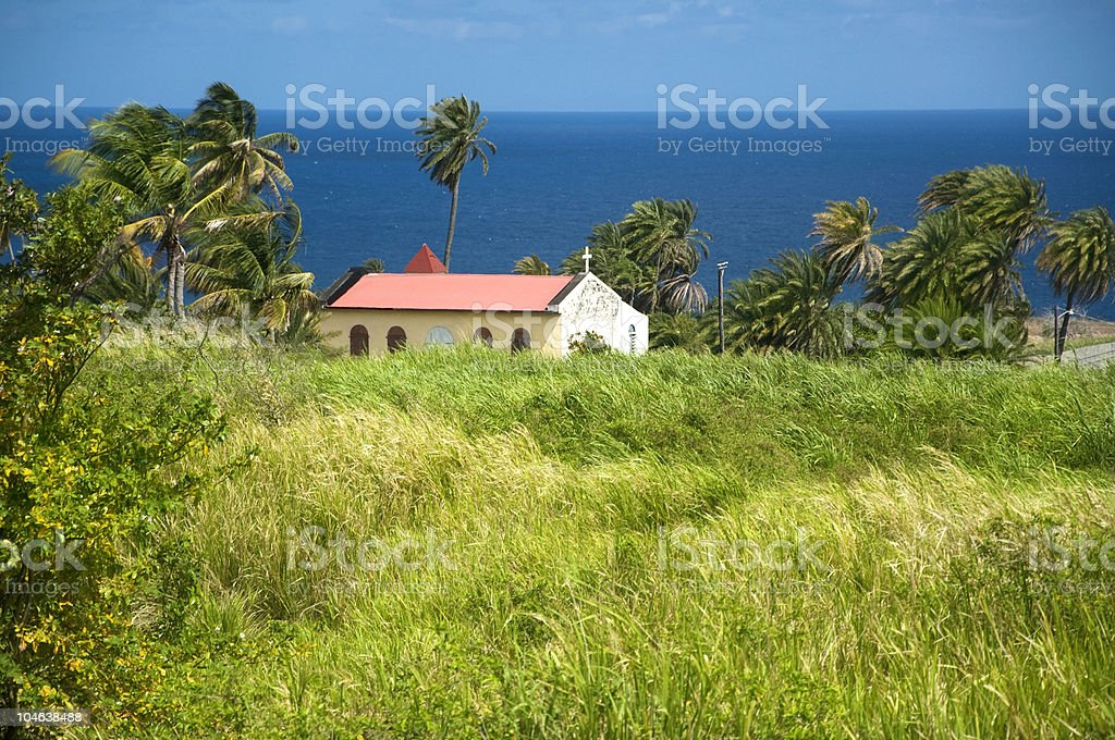 Sugar Cane Field with Church - St. Kitts stock photo