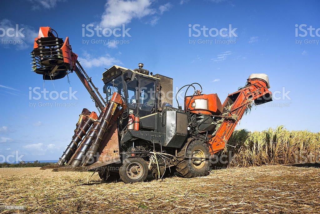 Sugar Cane Harvest equipment stock photo