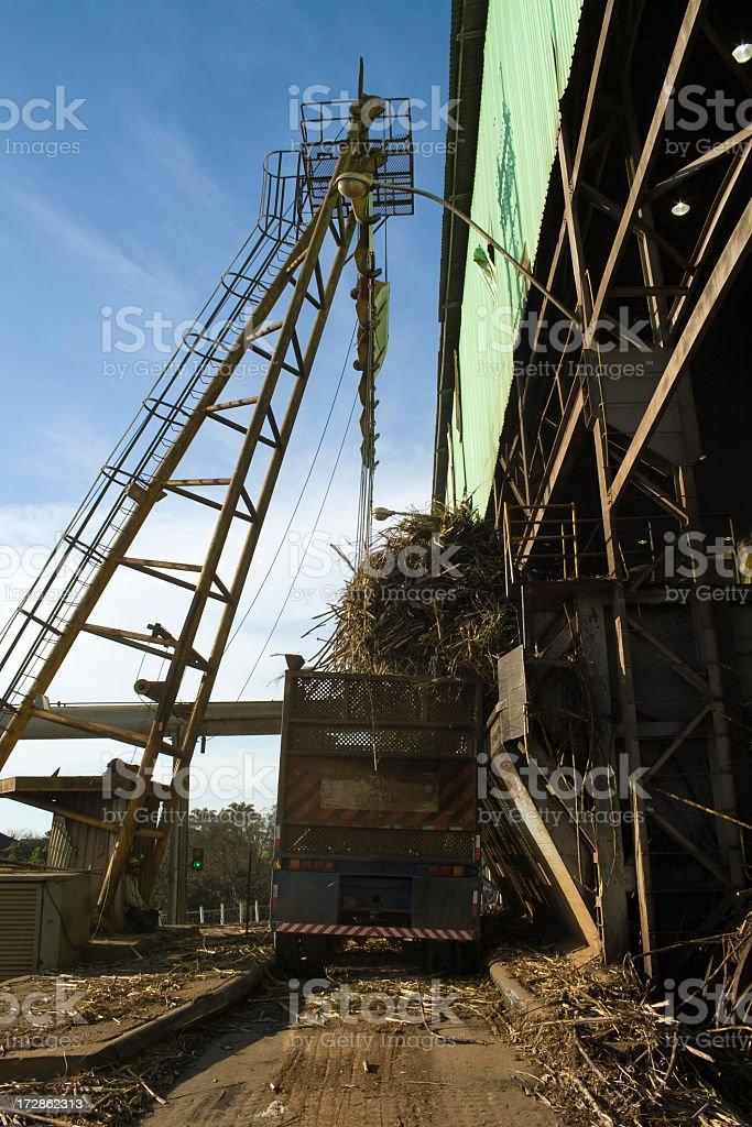 Sugar cane refinery royalty-free stock photo