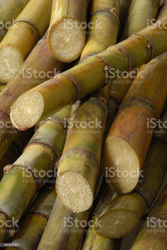 Sugar cane sticks 01 stock photo